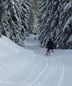 Snowmobile trip 2-21-14   Copy II