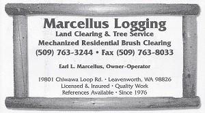Marcellus Logging