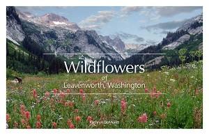 COVER_Wildflowers_of_Leavenworth