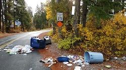 North Shore garbage